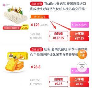 东小店自购省钱分享赚钱
